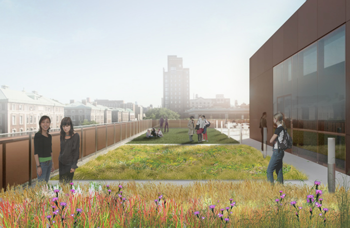 Green Roof Rendering